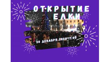Торжественное включениеглавной елкии новогодней иллюминации города Барановичи